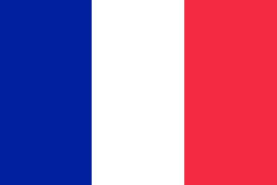levital szabadalom francia nyelven